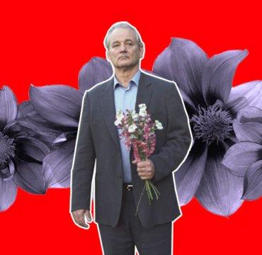 Цветы, 14 февраля, тест